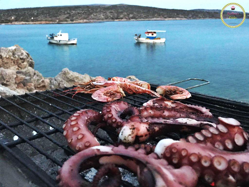 χταπόδι-θαλασσινά-χίος-οι ψαράδες των μεστών-μεστά-τραχήλια-καλοκαίρι