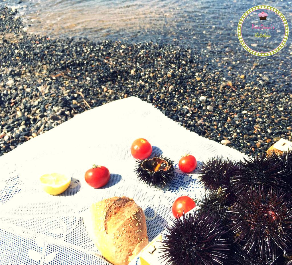 pandoras-kitchen-blog-greece-summer-chios-urchin